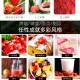 冻干草莓粉250g烘焙食用奶茶店雪花酥牛扎糖专用  2517122