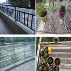 塑料网格防护阳台网养殖网防坠网片