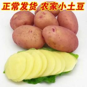 云南小土豆新鲜5斤马铃薯爱心助农产品蔬菜红皮洋芋农
