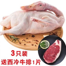 3只装杀完共5.4斤农村散养活鸭子肉宰杀土鸭整只鸭