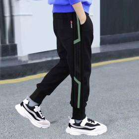 男童春款运动裤中大童休闲洋气长裤潮