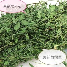供应烘干紫花苜蓿草龙猫兔子荷兰猪零食烘干新鲜小麦草