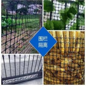 塑料网格防护围栏网土工格栅