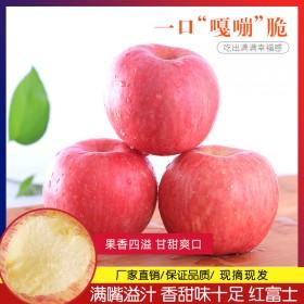 红富士苹果5斤装新鲜水果