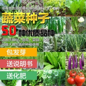 50包 四季播种蔬菜种子青菜白菜生菜西红柿