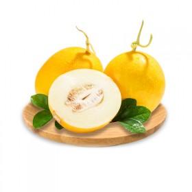 现货黄河蜜瓜5斤当季甜瓜新鲜小香瓜-一站之家