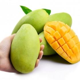 越南香玉芒果带箱9.5-10斤大果大青芒新鲜水果非
