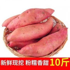 新鲜地瓜10斤装自种小香薯黑土地香黄白瓤随机发