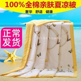 100%全棉夏被空调被夏凉被纯棉夏季可机洗薄被子