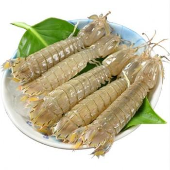 4斤熟冻鲜活皮皮虾冷冻虾虎虾爬海鲜特大公虾姑虾爬子