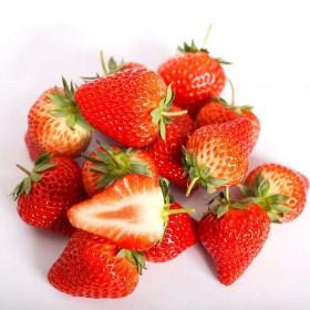 500g现摘新鲜甜查理草莓当季水果草莓大棚草莓大草