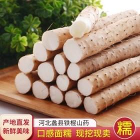 5斤河北蠡县现挖现发铁白皮山药棍山药新鲜麻山药甘甜