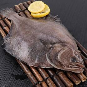 5斤装格陵兰鲽鱼偏口鱼整条新鲜黄金鲽鱼冷冻新鲜海鲜