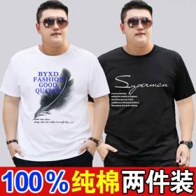 2件装100%纯棉夏季短袖T恤男圆领半袖加肥大码