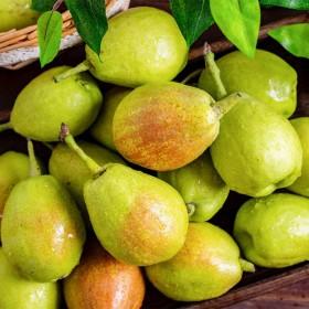 库尔勒香梨子5斤正宗库尔勒一整箱当季新鲜水果
