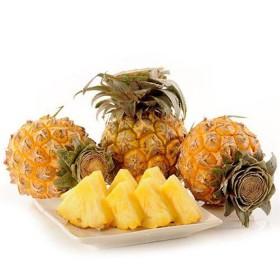 泰国迷你小菠萝香水菠萝香脆甜菠萝小凤梨普吉岛9斤