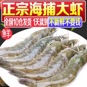 净重6.6斤整盒虾鲜活海鲜水产超大虾基围虾活虾鲜虾