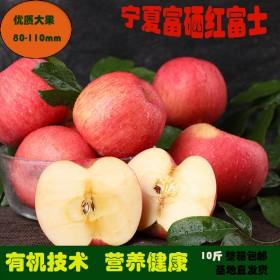 宁夏苹果冰糖心红富士脆甜不硬富硒无公害