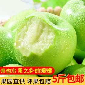 新鲜水果青苹果应季水果陕西5斤