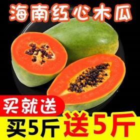 【坏果包赔】海南红心木瓜10斤/5斤新鲜应季热带水