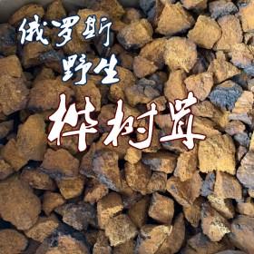 俄罗斯进口野生桦树茸桦褐孔菌