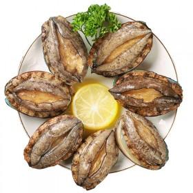 新鲜鲍鱼冷冻非鲜活即食加热盆菜鲍鱼50只一袋中号