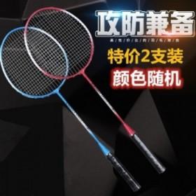 羽毛球拍成人耐用双拍耐打男女2支