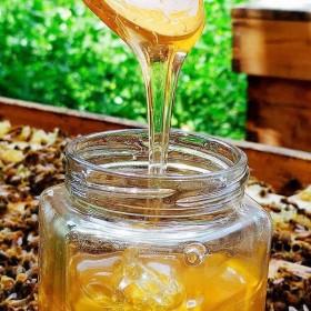 野生百花蜜自家养土蜂蜜峰蜜一斤