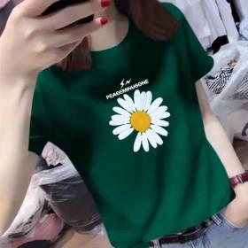 小雏菊短袖T恤女2020夏季新款韩版女装修身