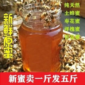 百花蜜500克土蜂蜜蜂蜜