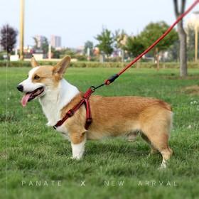 2米3米加长狗狗牵引绳柯基泰迪金毛宠物大型中小型犬