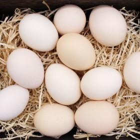 30枚 【现捡现发】正宗黄河滩区农家散养土鸡蛋草.