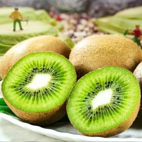 5斤大大果单果100克以上 绿心猕猴桃超甜限地区