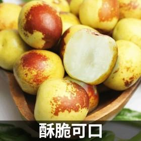 大荔冬枣3斤包邮现货当季时令新鲜水果整箱脆甜青枣孕