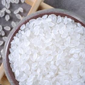 珍珠米10斤装【新米】19年新大米正宗东北珍珠米1