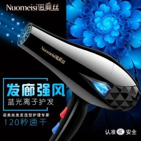 蓝光电吹风机离子护发家用学生电风女理发店大小功率