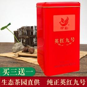 英德红茶英红九号仲聆广东红茶生态茶叶浓香条红茶