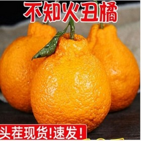 10斤装丑橘不知火丑柑耙耙柑橙子桔子