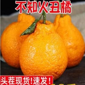 5斤装丑橘不知火丑柑耙耙柑橙子桔子