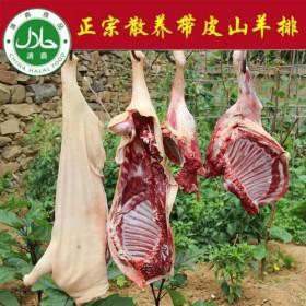 3斤新鲜山羊排带皮羊肉羊肋排羊排肉 散养山羊排去皮