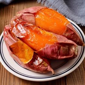 烟薯25蜜薯红薯