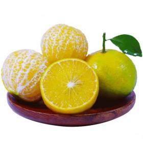 皇帝柑新鲜水果应季当季桔子薄皮贡柑整箱柑桔柑橘