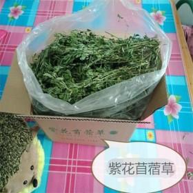 直销一级烘干头茬紫花苜蓿草龙猫兔子金丝熊仓鼠牧草