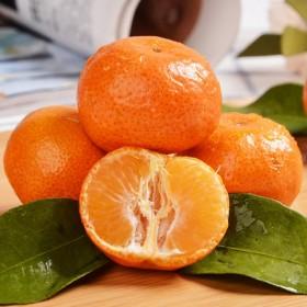 3斤广西武鸣沃柑应季当季新鲜水果整箱批发桔子