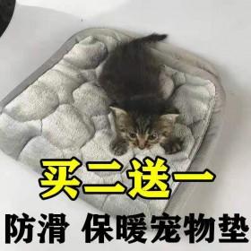 猫垫狗垫子宠物睡垫秋冬