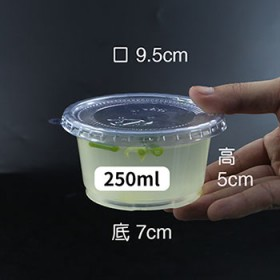 一次性汤杯250ml带盖防漏密封酱料杯塑料打包盒