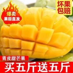10斤高山大芒果金煌玉芒青芒当季新鲜水果应季新鲜水