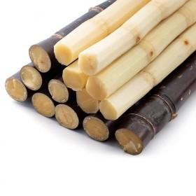 现砍广西特产黑皮甜甘蔗新鲜应季水果甘蔗9-10斤整