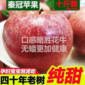 10斤秦冠苹果冰糖心