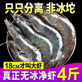 整箱海捕大虾4斤鲜活冷冻新鲜超大虾鲜虾海鲜水产青虾